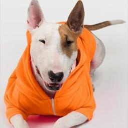 Large Orange Fleece Doggie Hoodie
